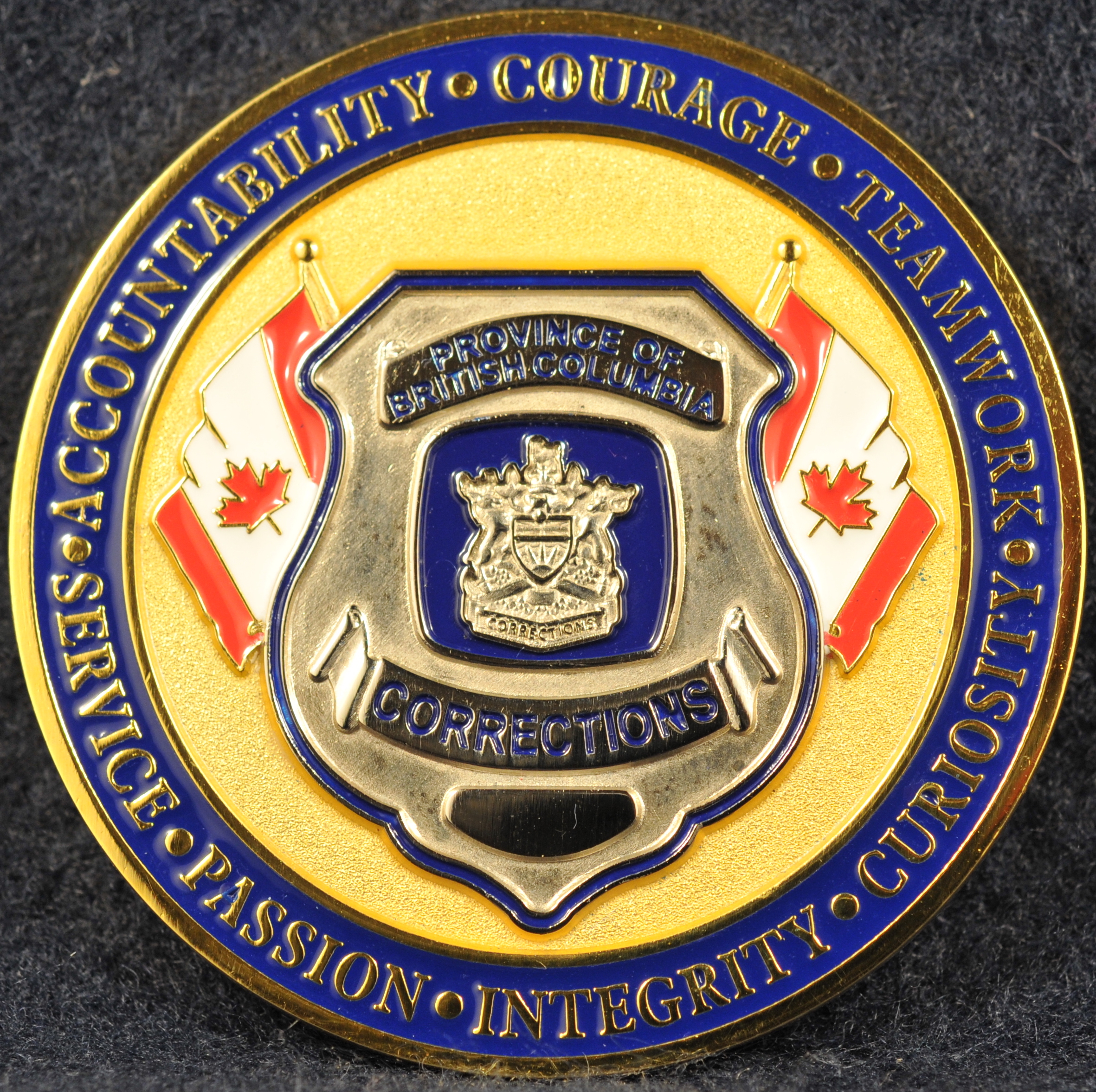 how to become a corrections officer in bc