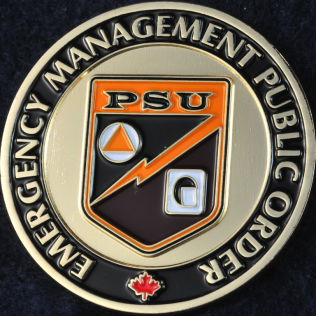 Toronto Police Service Emergency Management Public Order